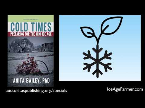 """Ozarks Ground Report: Dr. Anita Bailey, Author, """"Cold Times, Preparing for the Mini Ice Age"""" Mp3"""