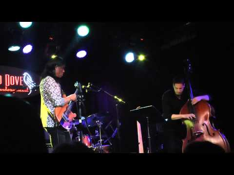 Stanley Jordan - Soiled Dove Underground - Colorado - 1-18-14 - HD
