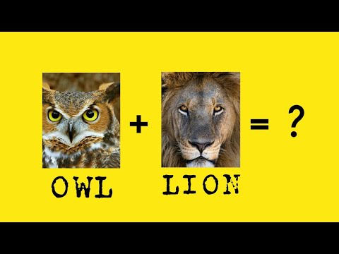 Owl + Lion = ? | OCtober Challenge