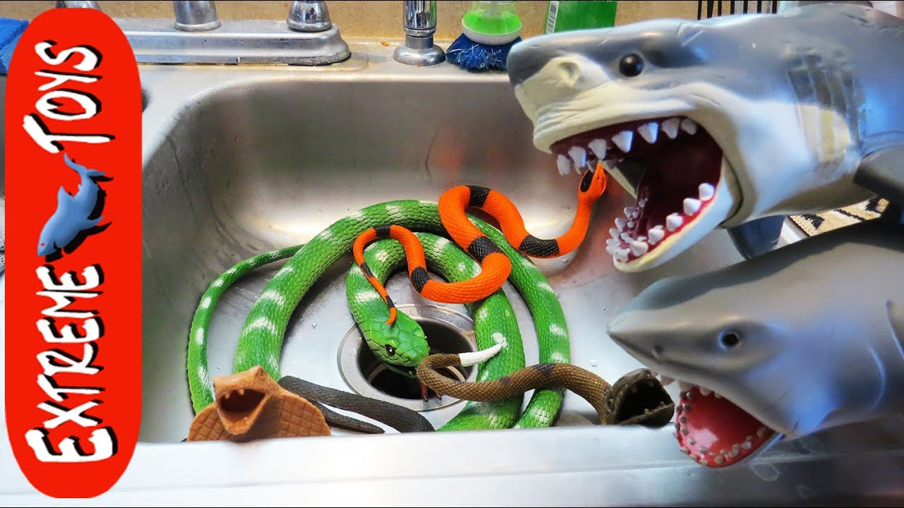 Megaladon Sharks Toys For Boys : The snakes return toy sharks save boys from sn
