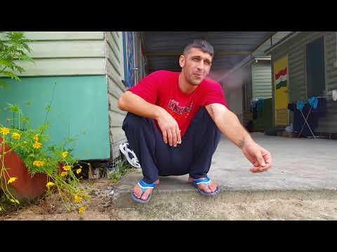CHAUKA PLEASE TELL US THE TIME by Arash Kamali Sarvestani & Behrouz Boochani    GeoMovies