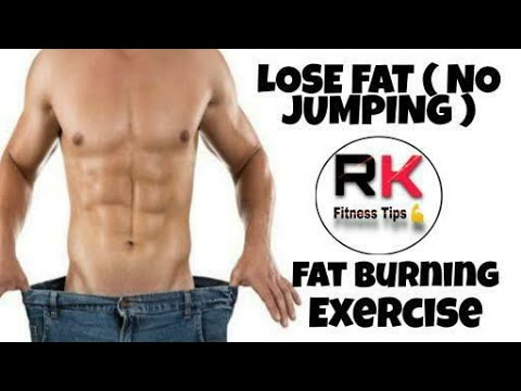 fat burning workout at home without equipment no jumping