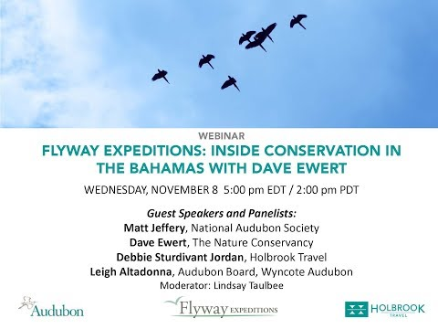 Flyway Expeditions: Inside Conservation in the Bahamas