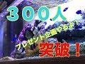 (海水魚水槽)♯46 300人突破 プレゼント企画やります