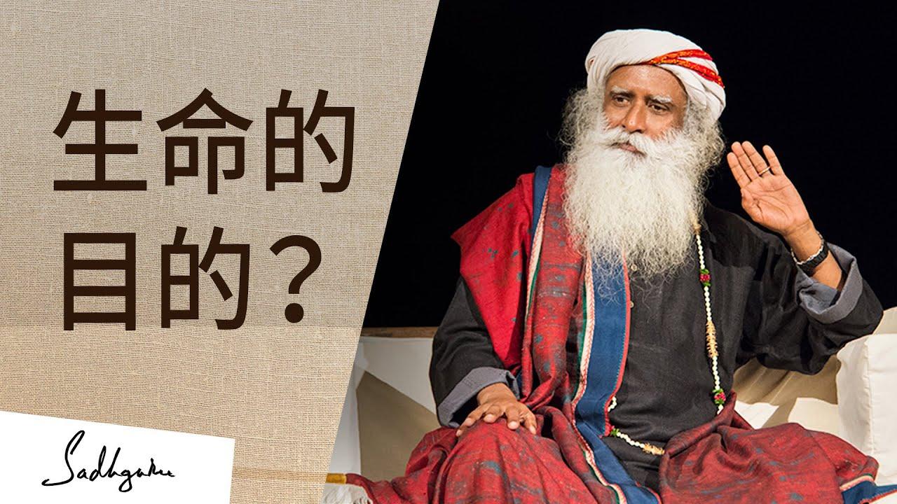 生命的目的是什麼?| Sadhguru (薩古魯)