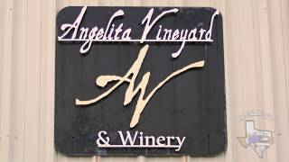 Angelita Winery in Angus, Texas