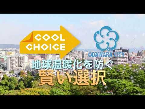【小田原市】COOL CHOICE