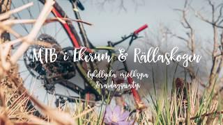 Ekerum & Rällaskogen på MTB