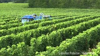 Video plantation de vignes 2012 planteuse wagner guidage par satellite - Traitement de la vigne ...