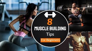 8 Muscle Building Tips For beginners - How to Gain Muscle Size