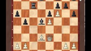 Шахматы для начинающих. Атака на короля.