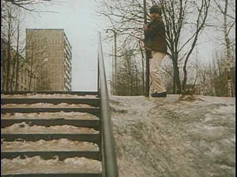 Дама с попугаем 1988