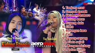 Download lagu WORO WIDOWATI - KIDUNG ETNOSIA FULL LAGU TERBARU | AEROMAX PRODUCTION