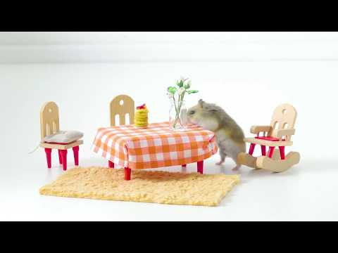 vous-ne-croirez-jamais-ce-que-ce-hamster-a-dans-les-pattes.-mais-il-a-l'air-d'aimer-ça.