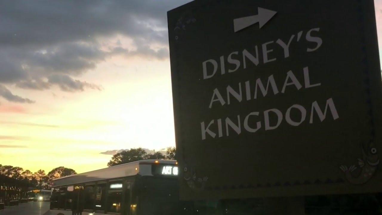 Disneyland Reopening Indefinitely Delayed by Gov. Gavin Newsom ...