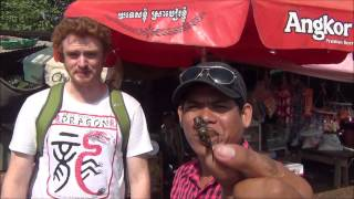 Eating Fried Crickets in rural Battambang, Cambodia (Eating insects for a snack)