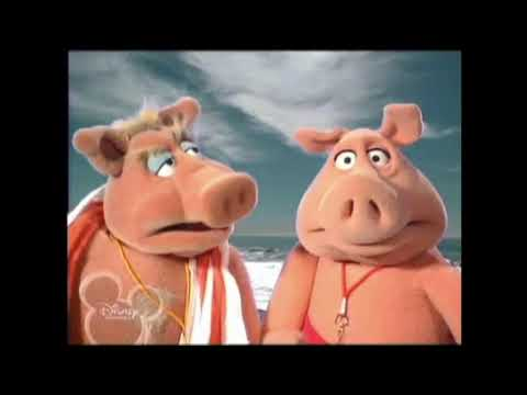 muppets-tonight:-bay-of-pigswatch---jellyfish
