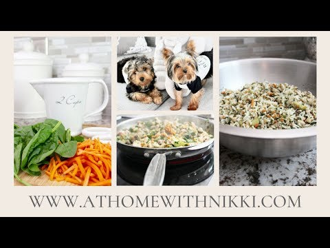 HOMEMADE DOG FOOD | COOKING FOR YOUR PET