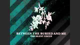 Between The Buried And Me - Aesthetic - 8 bit