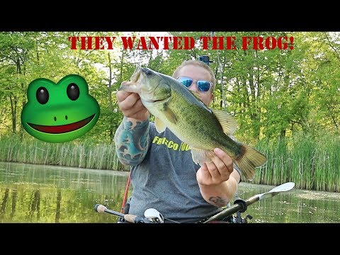BUSSE WOODS FROG FISHING!