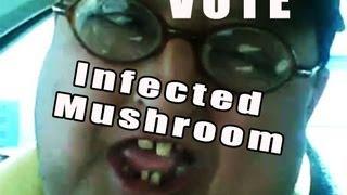 DJMAG on Mushrooms 2013