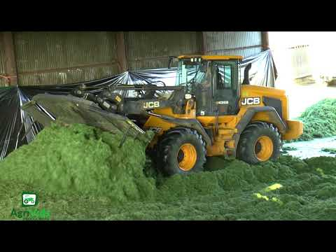 Silage 2018 JCB 435S On The Pit