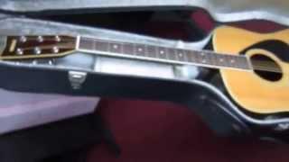Clip dan guitar ghitar Yamaha FG 301B