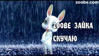 Zoobe Зайка, Скучаю!