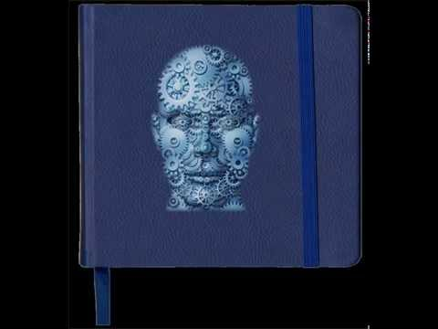 Human Journal Part 25 - Human level of Consciousness