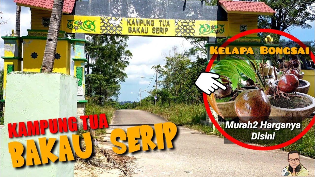 Kampung Tua Bakau Serip Nongsa Youtube