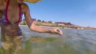 Азовское море и подводная съемка его обитателей. Чистейшая вода в бархатный сезон!!!!(Многие считают, что в Азовском море грязная и мутная вода.... вовсе нет!!!! Смотрите мое видео!, 2016-09-20T16:18:33.000Z)