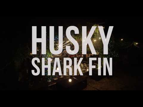 Husky - Shark Fin (Live Session) [Part Two of Three]