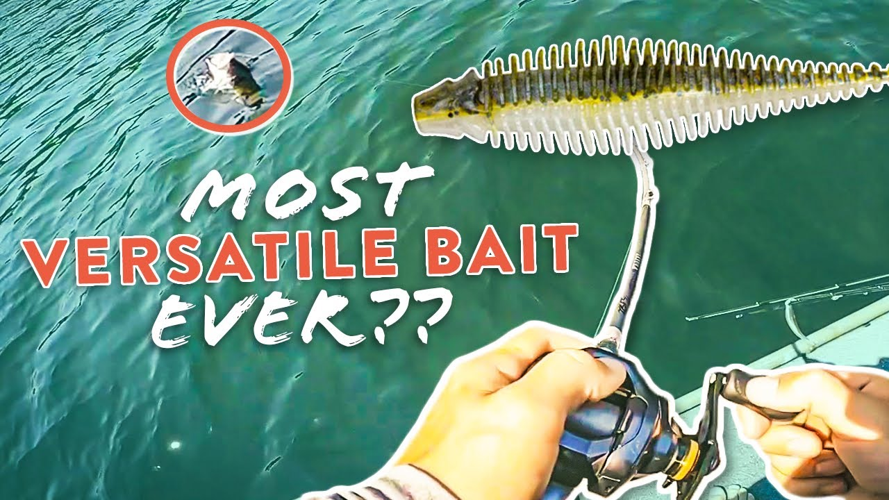 Breaking Down The NEW 10,000 Fish Yoto Worm & What Makes It So VERSATILE!