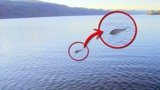 Fotografían al Monstruo del Lago Ness NO CREERÁS lo que Aparece en la Imagen