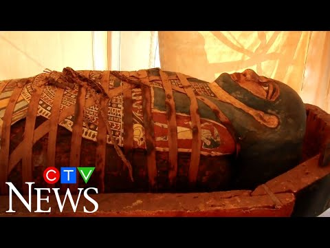 Egypt has discovered dozens more ancient coffins in the necropolis of Saqqara