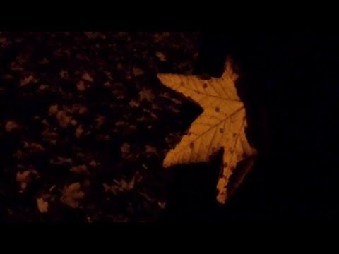 fallen angel - Instrumental - Tom Arnosch