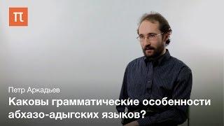 Грамматика адыгейского языка - Петр Аркадьев