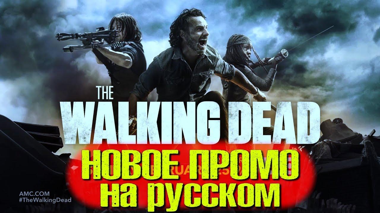 ходячие мертвецы 8