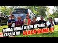 Viral Bongkar Setingan Murai Batu Umur  Th  Bulan Sikat Juara   Mp3 - Mp4 Download