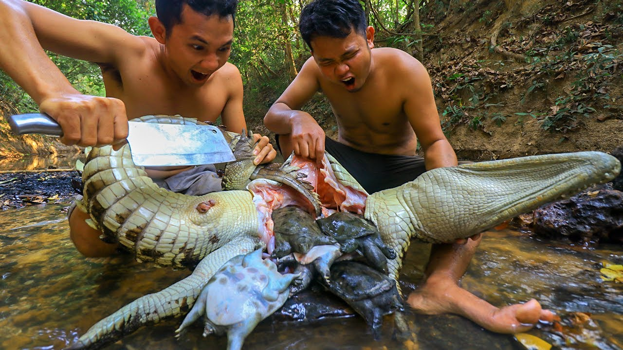 Download Unbelievable Turtle In Big Crocodile Stomach & Roasted Big Crocodile at Home - Survival Time