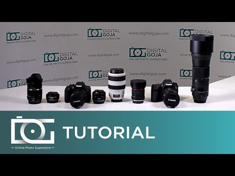 CAMERA LENS TYPES EXPLAINED | Wide Angle and Telephoto On Full Frame or Crop Sensor Cameras