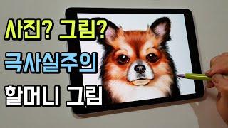 사진아님 주의!! 할머니가 6시간동안 태블릿으로 그린 강아지 그림 [이용숙 할머니]