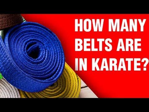 How Many Belts Are In Karate? | ART OF ONE DOJO