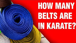 How Many Belts Are In Karate? | ART OF ONE DOJO