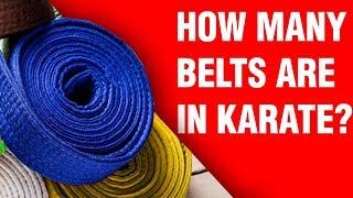 How Many Belts Aŗe In Karate? | ART OF ONE DOJO
