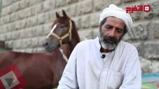 اتفرج | المقص في إيدي و«البهيم» في وشي.. مصطفى: الحلاقة للبهائم وراثة