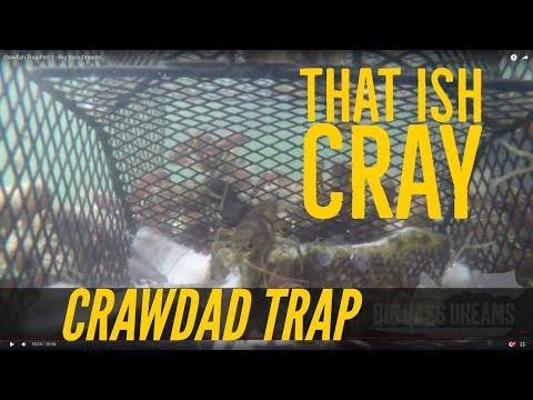 Crawfish Trap Part 1 - Catching Crawdads Big Bass Dreams
