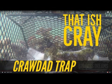 Crawfish Trap Part 1 - Catching Crawdads Big Bass Dreams