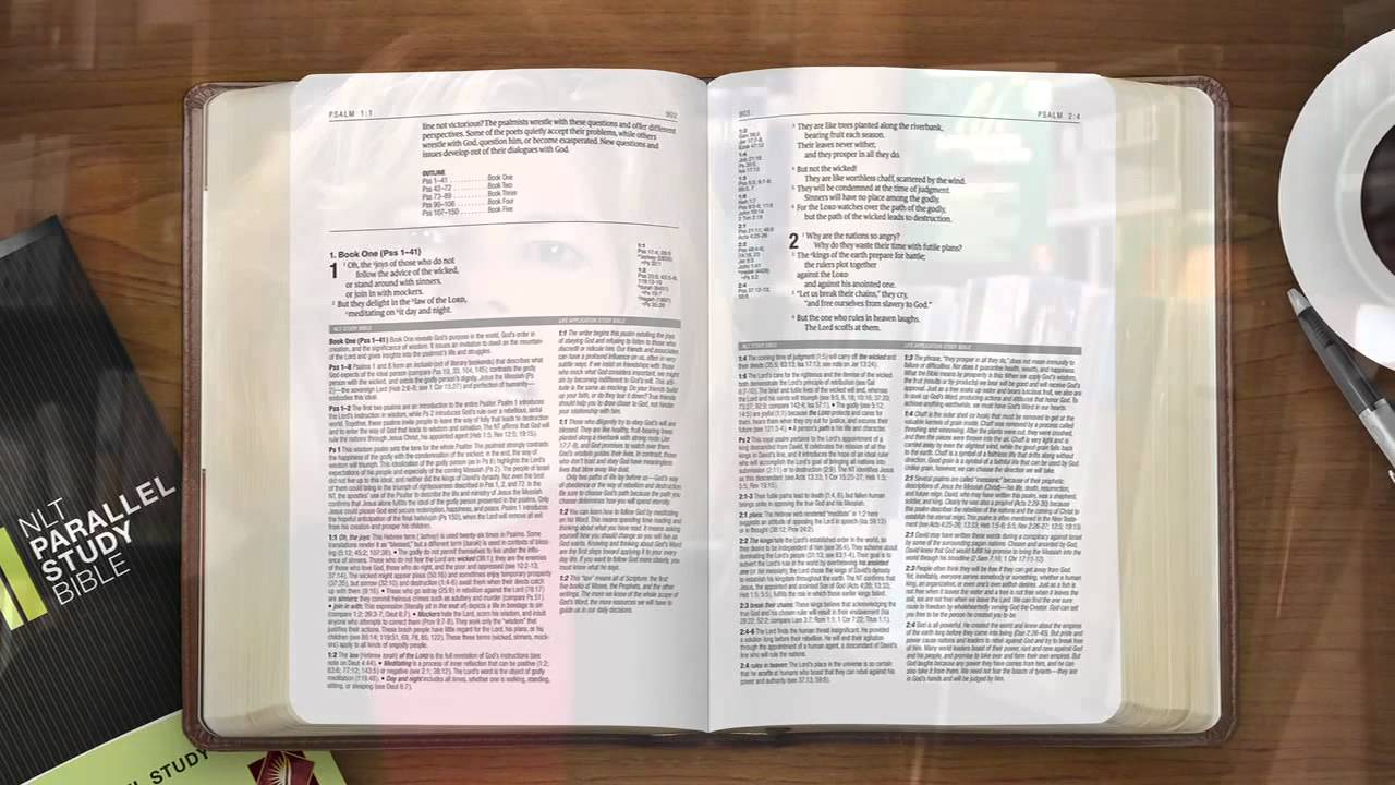 Parallel Bibles - Christianbook.com