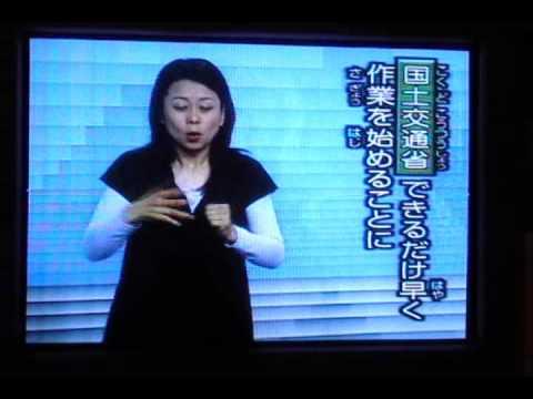 Sign language interpreter on Tokyo television, June '08